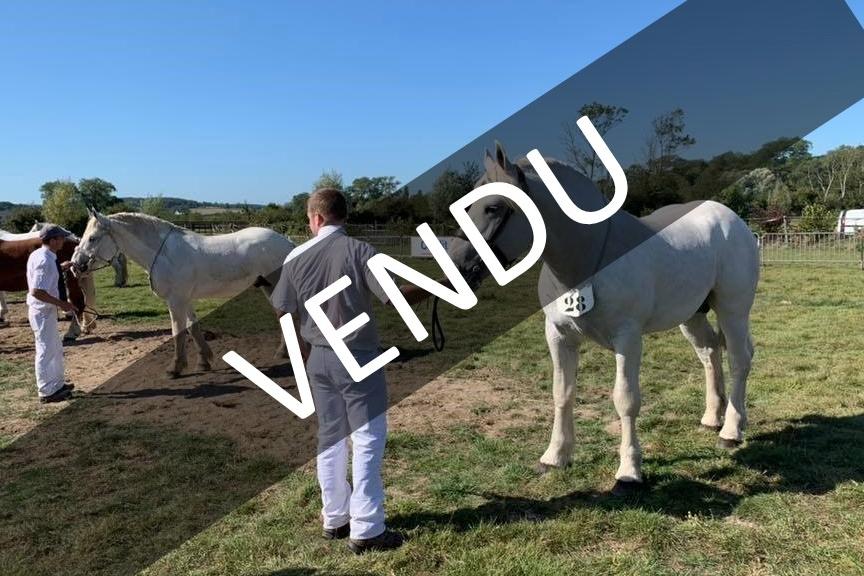 HOLD D'UP DE BERNAVIL